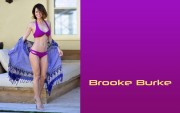 Brooke Burke : Hot Wallpapers x 23