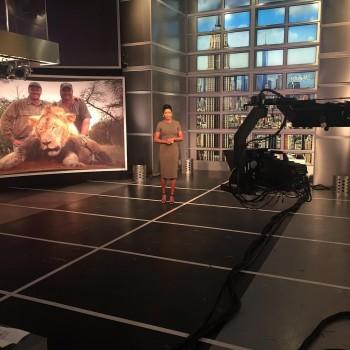 "TAMRON HALL *programming alert!* possible sheer to nips! ""Blood Lions"" on MSNBC"