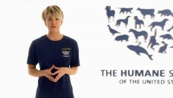 Kaley Cuoco in TV ad for The Human Society x3