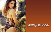 Kelly Brook : Hot Wallpapers x 13